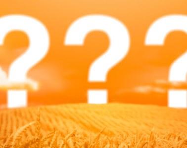 Часто задаваемые вопросы FAQ Бородокаст